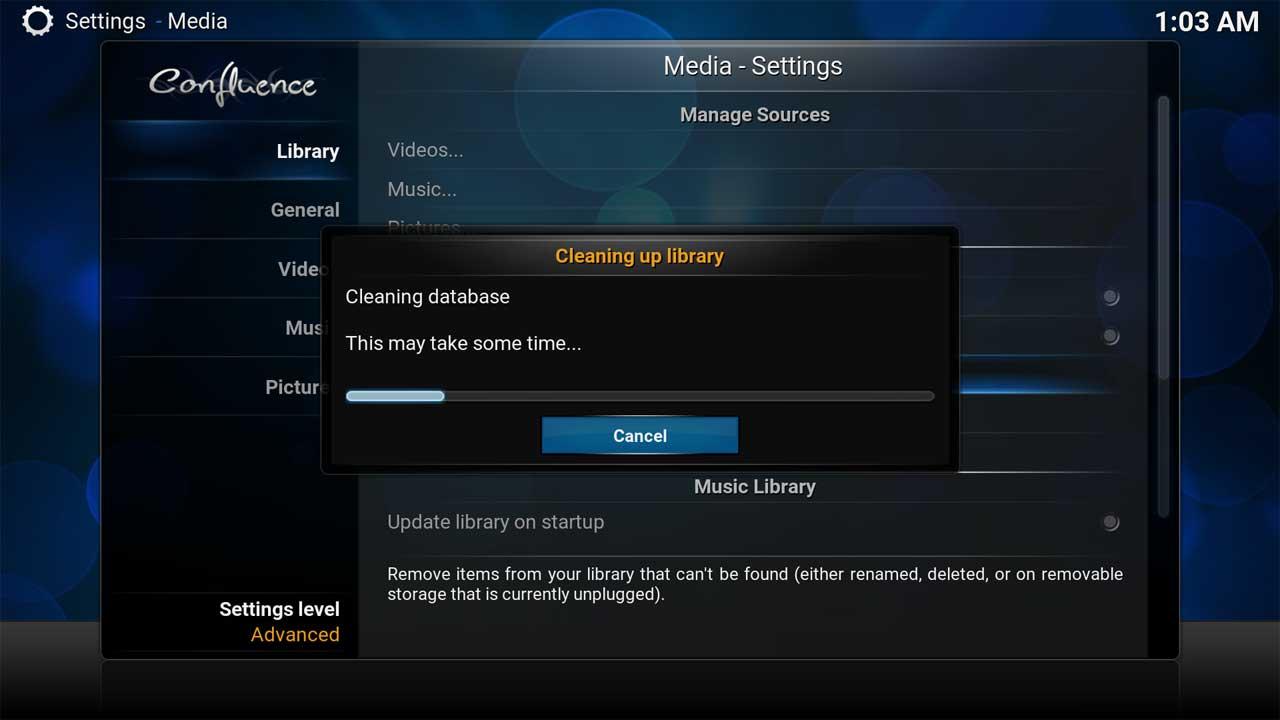 Clean Video Library Progress